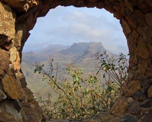Canarias alternativ